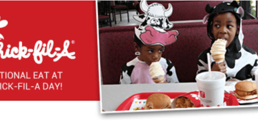 NOM National Organization for Marriage Chick-fil-A