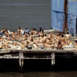 Homo History - Sex: Christopher Street, the Trucks, and the West Side Highway Piers A Sexual Wonderland