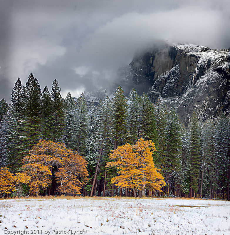 Yosemite,snow,tunnel view
