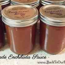 This is My Quest And Canning Homemade Enchilada Sauce