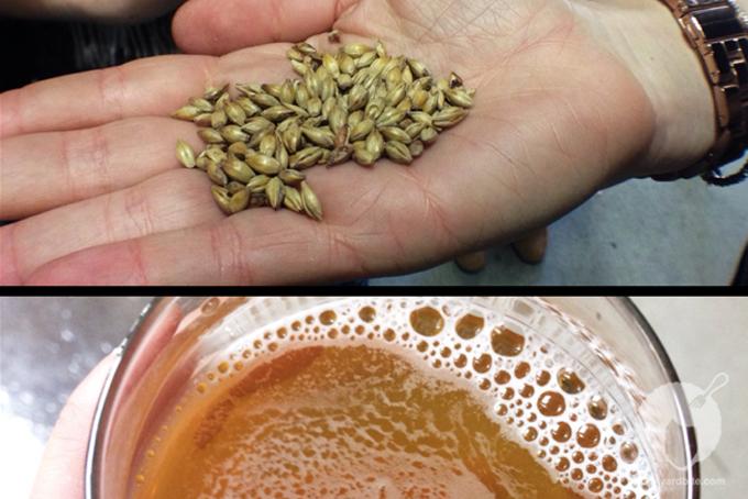 backyardbite-golden-road-brewing-1