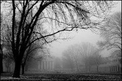uva_fog_small