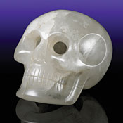 The Smithsonian Institution Skull