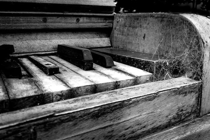 Musical Decay - Dave C