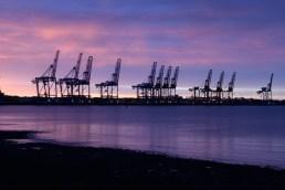Sunrise at the Docks - Angela Palfrey