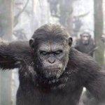 Apes Revolution - Il Pianeta delle Scimmie, la recensione [2]