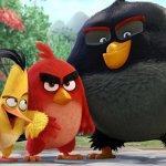 Angry Birds, gli auguri di Buona Pasqua dei pulcini
