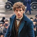 Animali Fantastici e Dove Trovarli: David Heyman sulle differenze con Harry Potter
