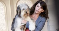 Gilmore Girls: nel revival Lorelai avrà ancora il suo cane Paul Anka