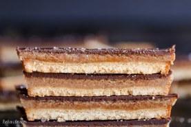 Homemade Twix Bars (GF, Paleo + Vegan)