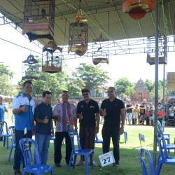 Klungkung Kicau CUP 2017 Digelar