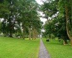 bali, botanical garden, kebun, raya, eka karya, bedugul, bali botanical garden, kebun raya, kebun raya bedugul, places, places of interest, places to visit