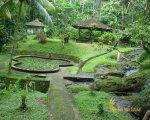 goa, gua, gajah, bali, elephant, cave, goa gajah, gua gajah, elephant cave, places of interest, places to visit, tourist, tourism, tourism object, garden park