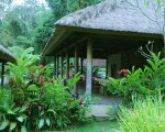 restaurant, penatahan, bali, tabanan, hot spring, penatahan hot spring, bali hot spring, places, places to visit