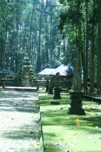 hindu temple, sangeh, monkey, forest, bali, places, interest, sangeh monkey forest, bali tourist destinations