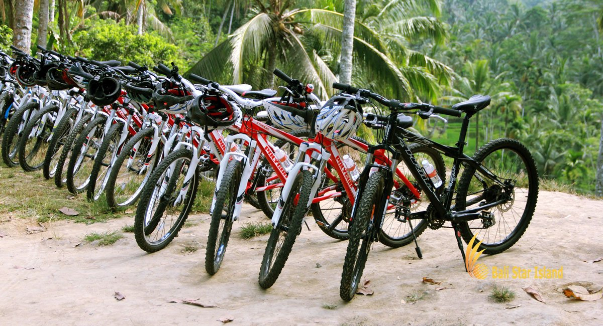 Bali Cycling  Adventures | Mountain – Rice Paddy Cycling