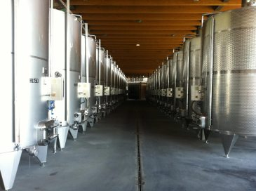BL-Wine-Tasting-Tours-Italy-5