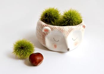 Cuenco Ceramica Erizo