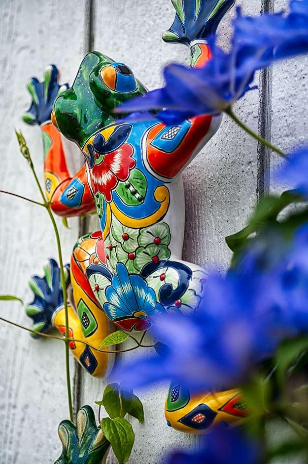Random photos. A color ceramic frog that I cam across today