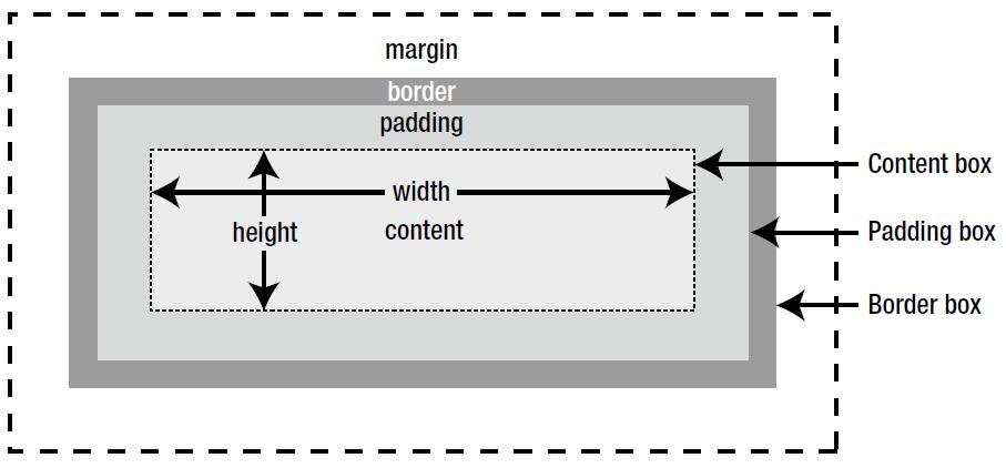 Css Box Model Basics Behind