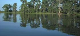 Lake Istokopoga