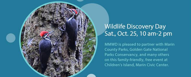 wildlife-discovery-day-oct-25-2014-wo-hyperlink