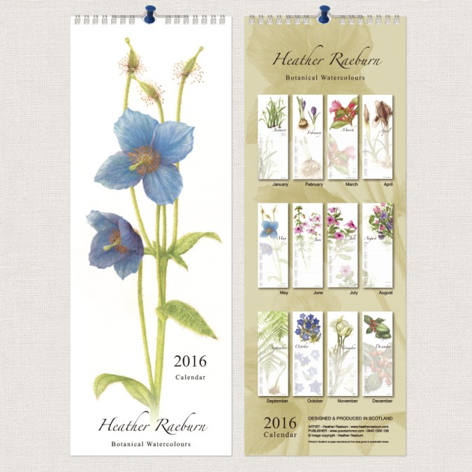 Heather Raeburn - Botanical Watercolours - 2016 Slimline Calendar - F+B
