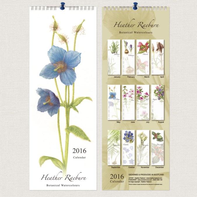 Heather Raeburn - Botanical Watercolours - 2016 Slimline Calendar - F+B