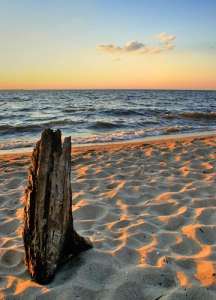 beach-chesapeake-bay