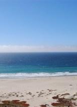 wild-beach-big-sur-usa