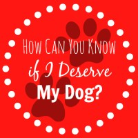 How Can You Know if I Deserve My Dog?