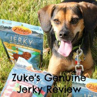 Zuke's Launches Genuine Jerky Treats for Dogs + GIVEAWAY!
