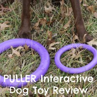 PULLER Excels as an Interactive Dog Toy + GIVEAWAY