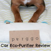 Go Green and Stink Free with PURGGO Car Eco-Purifier + GIVEAWAY!