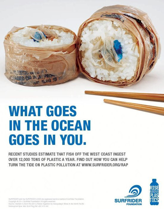 Plastic sushi - what goes in the ocean goes in you