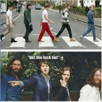 One-Direction-on-Abbey-road-get-the-fuck-out.JPG