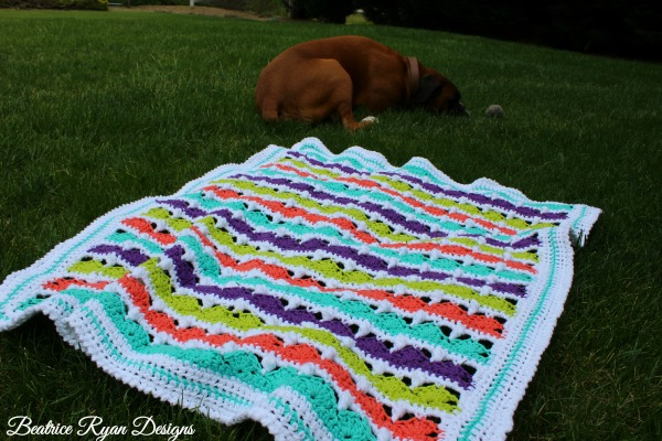 Summer Day's Baby Blanket and Charlie