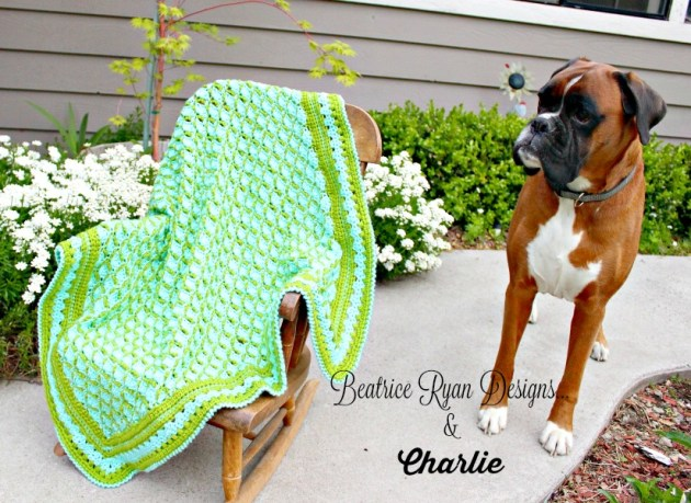 Frog Pond Baby Blanket and Charlie