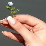 Top Ten Tips for Beautiful Nails