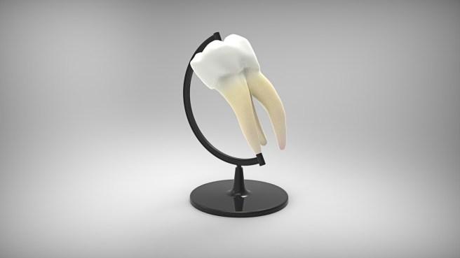 dentist14