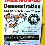 beccles-taekwondo-demo04