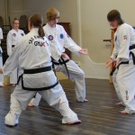 beccles-taekwondo-demo31