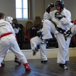 beccles-taekwondo-demo67