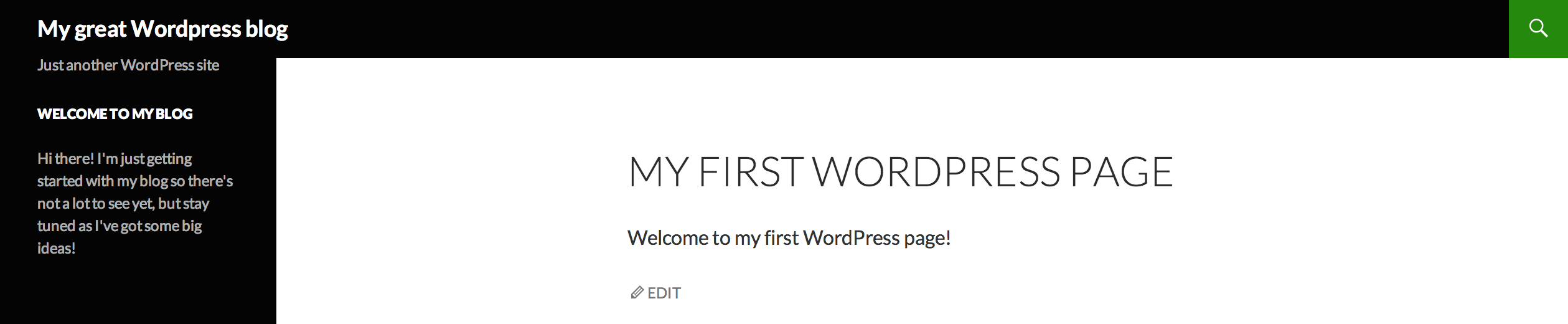 My First WordPress Page