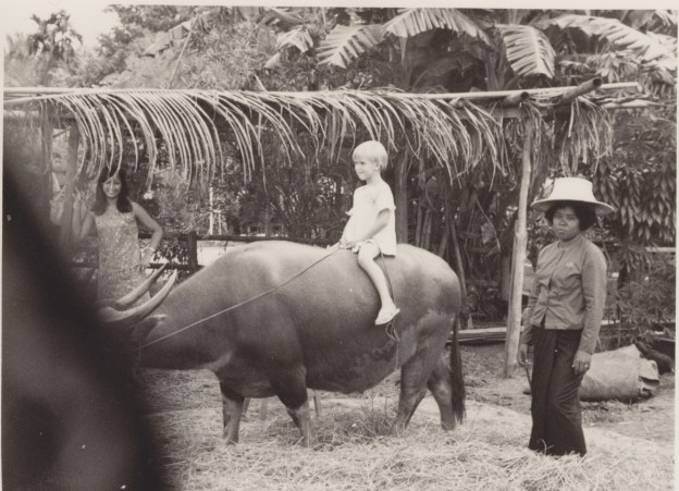 Deirdré on water buffalo at TIMland, 1968