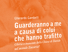 Cover book | Guarderanno a me a causa di colui che ha trafitto | Gherardo Gambelli