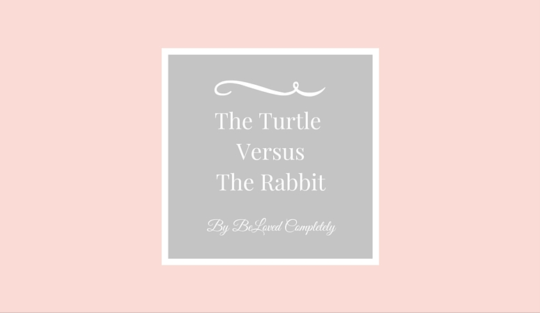 The Turtle Versus The Rabbit