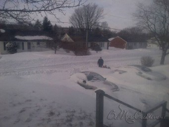 Snowed In - The plow created a chest high snowbank