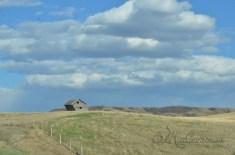 enroute to Drumheller, Alberta