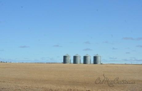 From Regina to Drumheller Alberta